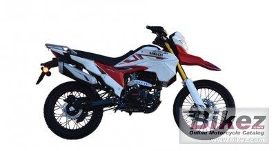 2020 Hamachi HM 300 C5D