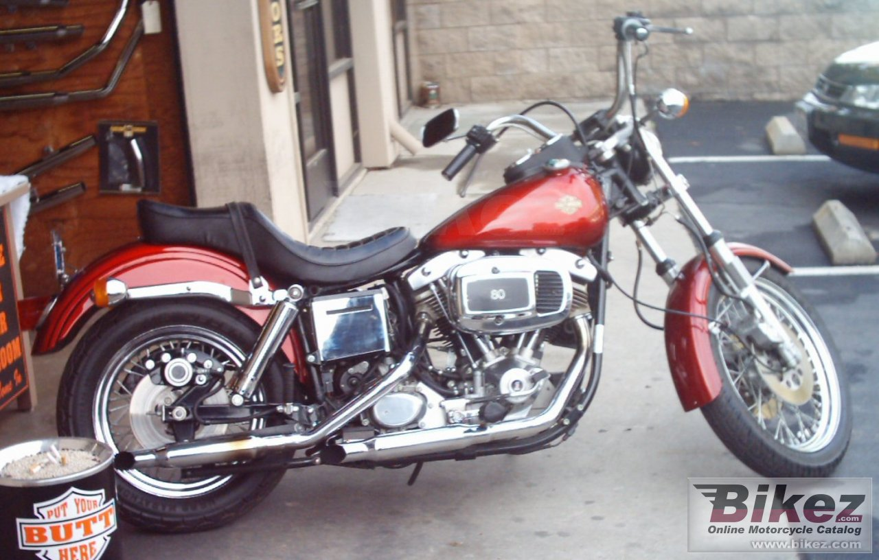 Raymond Haney fxe-f 1340 fat bob