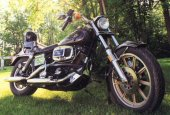 1982 Harley-Davidson FXB 1340 Sturgis photo