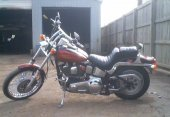 1987 Harley-Davidson FXSTC 1340 Softail Custom photo