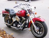 1988 Harley-Davidson FXST 1340 Softail photo