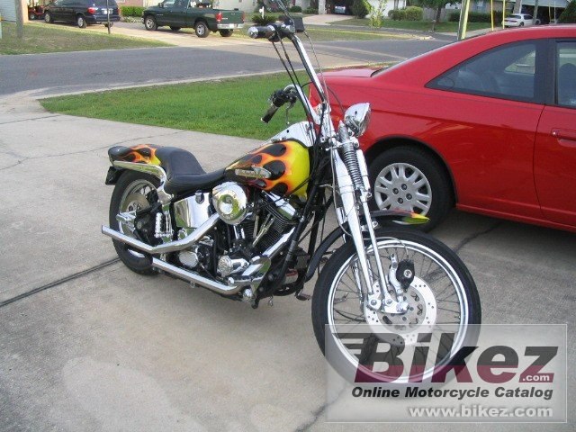 Ferguson 1340 springer softail (reduced effect)