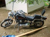 1992 Harley-Davidson FXSTC 1340 Softail Custom photo