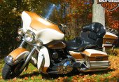 1994 Harley-Davidson Electra Glide Ultra Classic