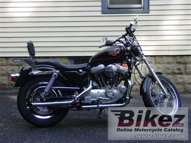 nymous user. 1200 sportster