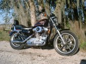 1996 Harley-Davidson Sportster 1200 photo