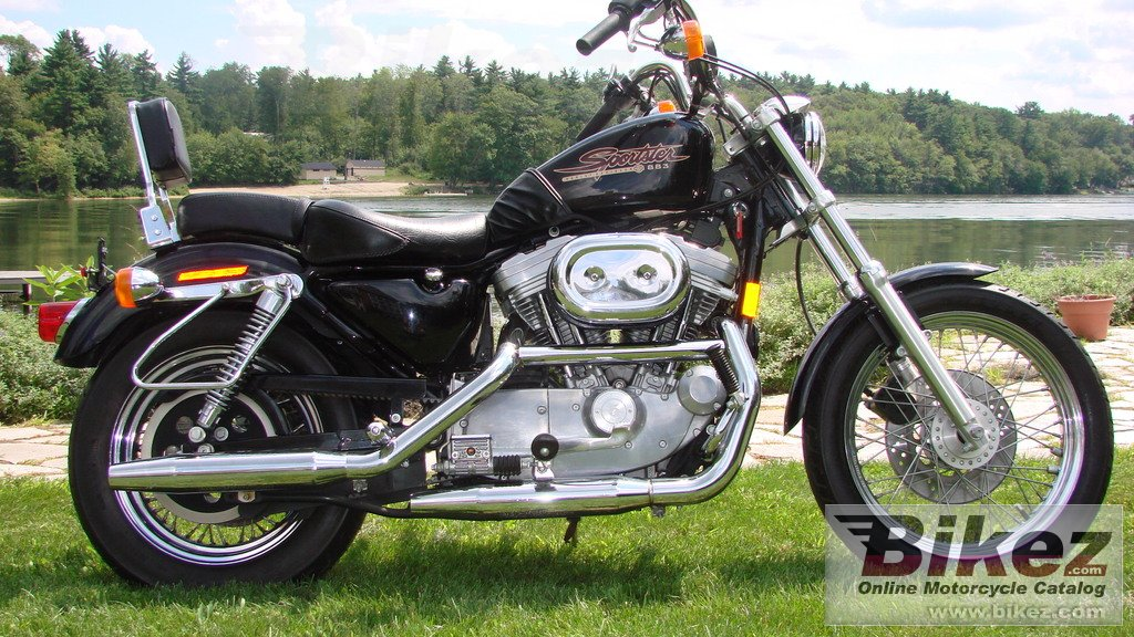 nymous user. 883 sportster standard