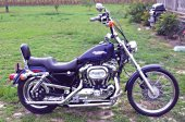 1999 Harley-Davidson Sportster 1200 Custom photo