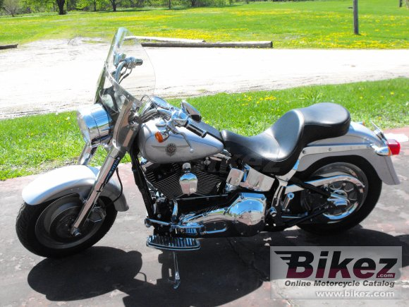 2002 Harley-Davidson FLSTF Fat Boy photo