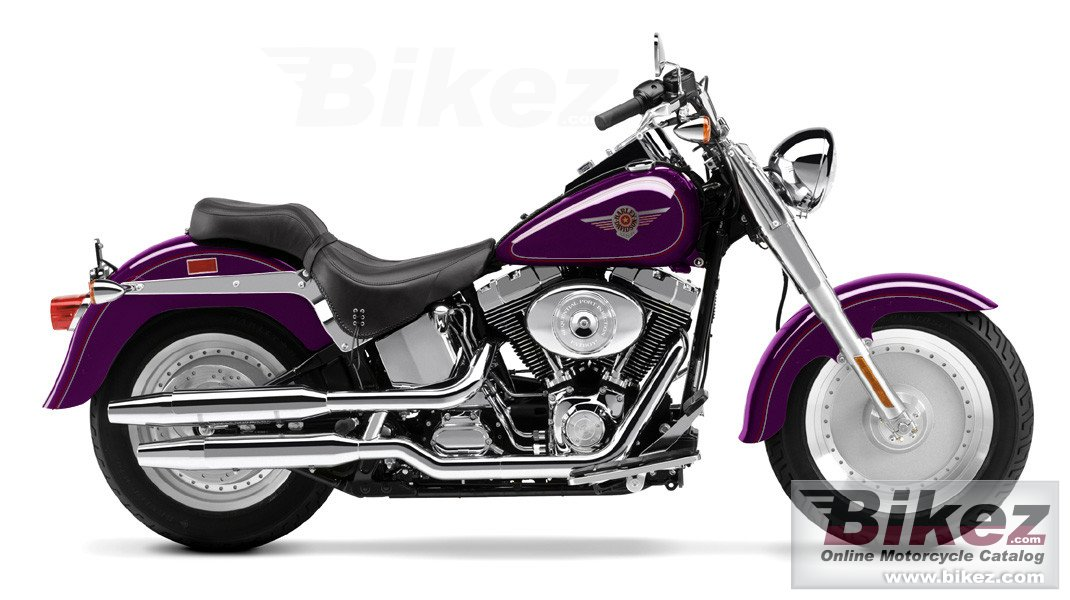 Davidson. Published with permission. flstfi fat boy