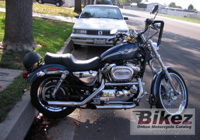 2003 Harley-Davidson XL 1200C Sportster 1200 Custom photo