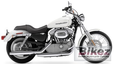 2004 Harley-Davidson XL 883 C Sportster Custom photo