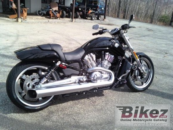 Harley Davidson: Harley-Davidson VRSCF V-Rod Muscle