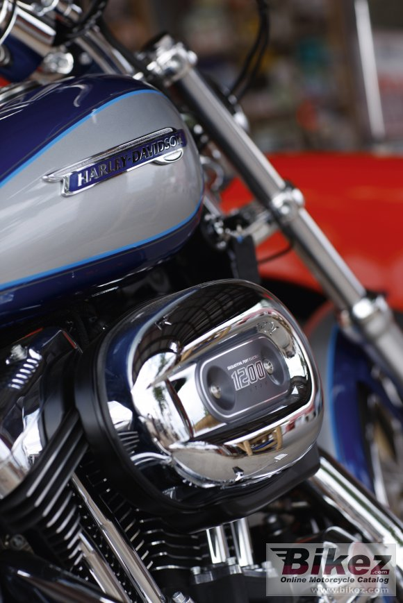 2010 Harley-Davidson XL 1200C Sportster 1200 Custom