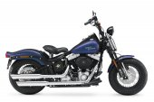 2010 Harley-Davidson FLSTSB Softail Cross Bones photo