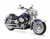 2010 Harley-Davidson FLSTN Softail Deluxe photo