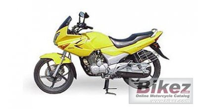 2007 Hero Honda Karizma photo