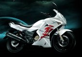 2010 Hero Honda Karizma ZMR photo
