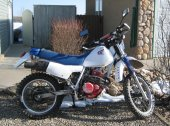 1986 Honda XL 350 R (reduced effect)