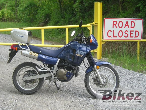 1988 Honda NX 250 photo