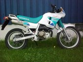 1993 Honda NX 250 photo
