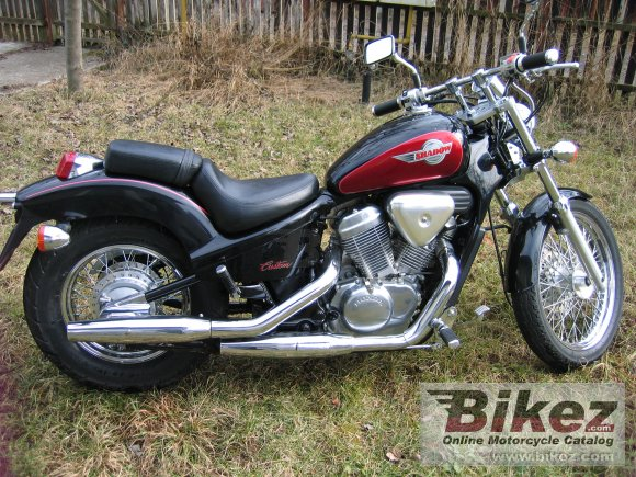 1995 Honda VT 600 C Shadow photo