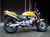 1999 Honda Hornet photo