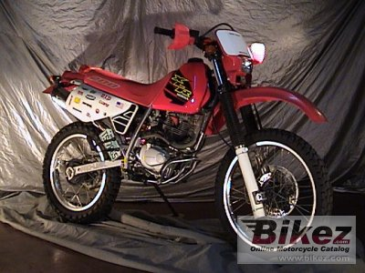 1999 honda xlr 125 specifications and pictures. Black Bedroom Furniture Sets. Home Design Ideas