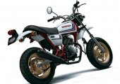 2006 Honda Ape 50 photo
