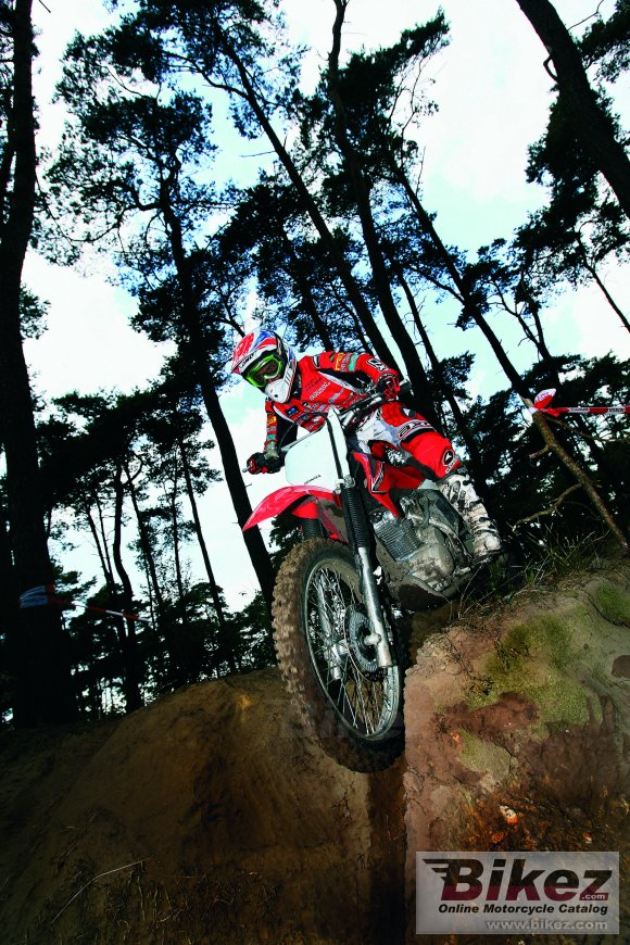2008 Honda CRF 230 F photo