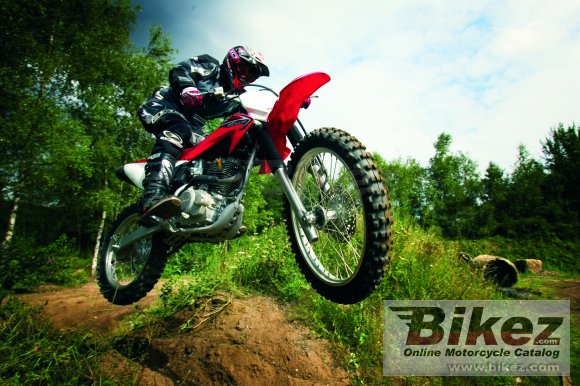 2009 Honda CRF230F photo