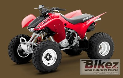 2009 Honda TRX300X photo
