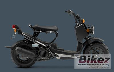 2009 Honda Ruckus specifications and pictures