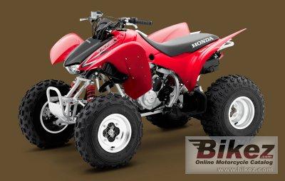2009 Honda TRX300X