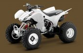 2010 Honda TRX300X photo
