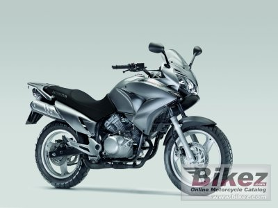 2010 Honda Varadero 125 DX photo