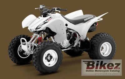 2010 Honda TRX300X