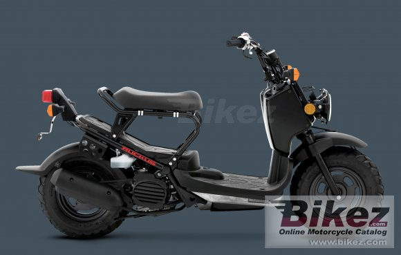 2011 Honda Ruckus photo