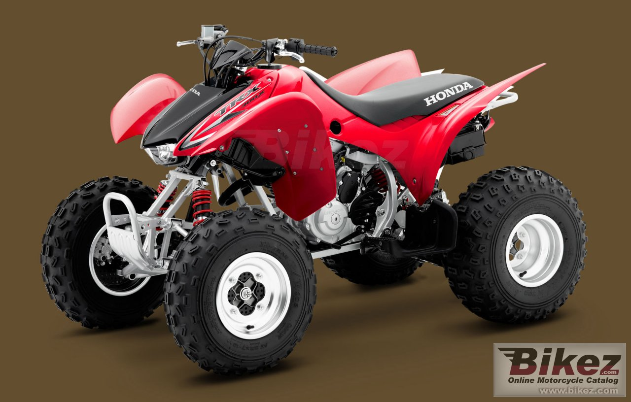 Big Honda trx300x picture and wallpaper from Bikez.com