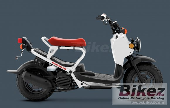 2012 Honda Ruckus photo