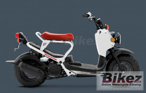 2013 Honda Ruckus photo