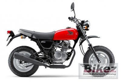 2013 Honda Ape 100 photo