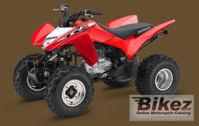 2019 Honda TRX250X