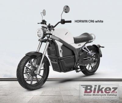 2021 Horwin CR6