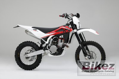 2010 Husqvarna TE310 specifications and pictures