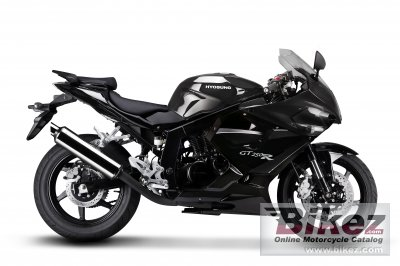 2010 Hyosung GT250R photo