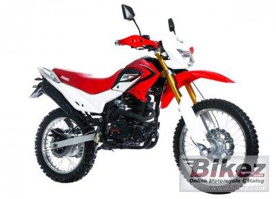 2020 Irbis TTR 223R