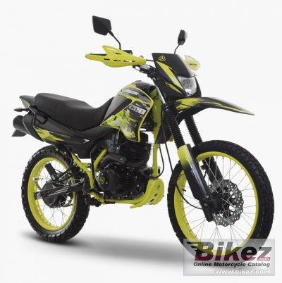 2020 Italika DM 200