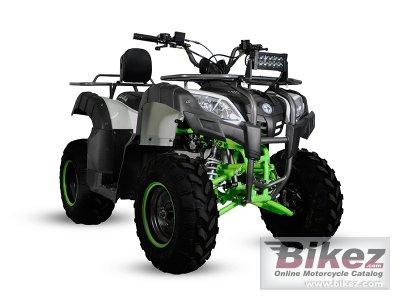 2020 Izuka Beast 200