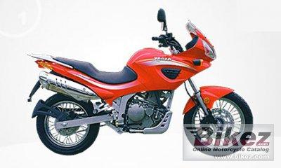 2008 Jialing JH600